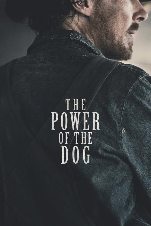 El poder del perro (2021)